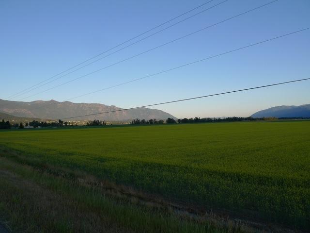 20111004-114508.jpg